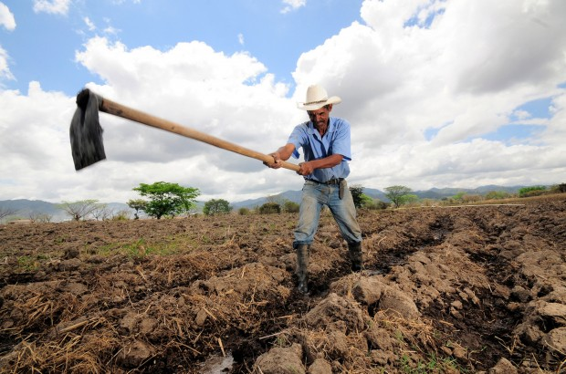 A farmer is seen in late March digging irrigation channels in Alauca, Honduras. Climate change could increase poverty levels for Central American families as well as increase the immigration rate, says a report published by Catholic Relief Services, which led several international organizations in a study. (CNS photo/Neil Palmer, Catholic Relief Services)