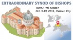 Extraordinary Synod of Bishops