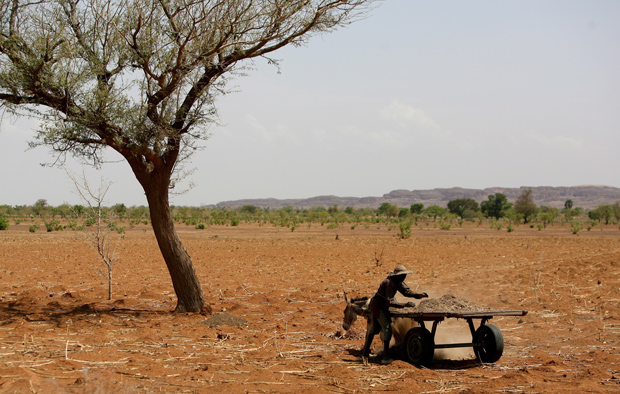 In this 2007 file photo, a Malian farmer tends to his field on a dry plain in Mali, Africa. (CNS photo/Nic Bothma, EPA)