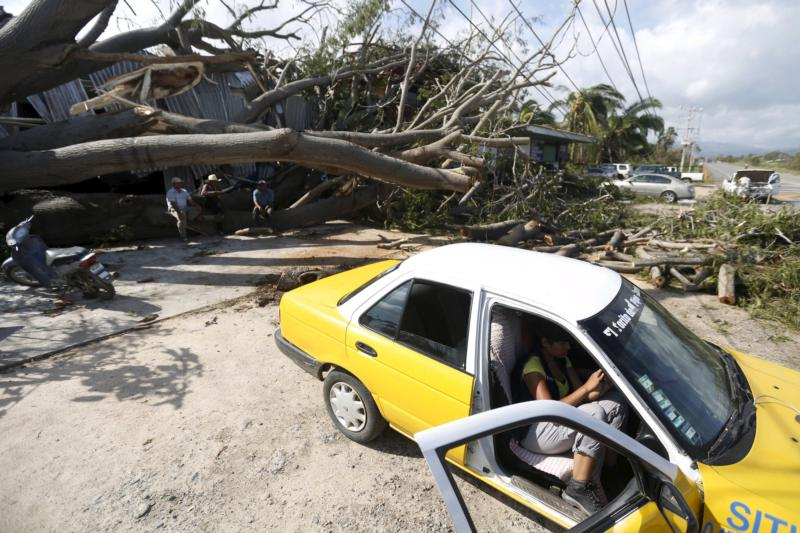 A person sits in a car by a felled tree in Melaque, Mexico, Oct. 24. (CNS photo/Edgard Garrido, Reuters)