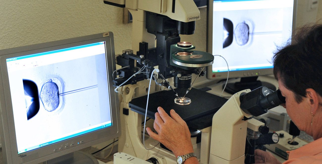 Verona Blumenauer, director of the Kinderwunschzentrum Leipzig Laboratory in Germany,  inspects the microinjection of sperm into an egg cell using a microscope in this July 2011 photo at the in vitro fertilization clinic. (CNS photo/EPA)
