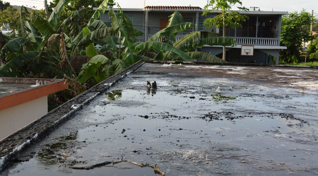 Standing water is seen on a flat roof in San German, Puerto Rico, in this undated photo. Puddles of water contribute to the spread of Zika in Puerto Rico. (CNS photo/CNS photo/Wallice J. de la Vega)