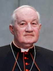 Cardinal Marc Ouellet, prefect of the Congregation for Bishops, is seen at the Vatican June 14. (CNS photo/Paul Haring)