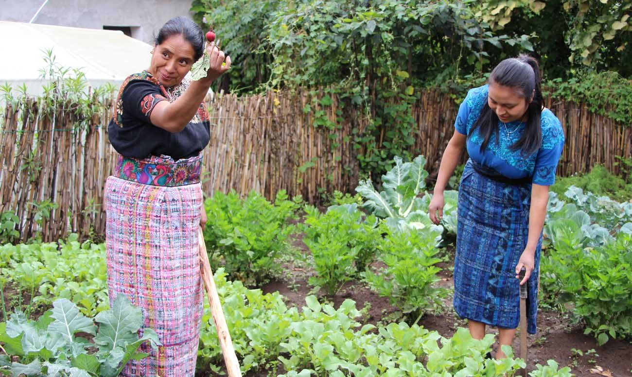Julia Martinez of Momostenango, Guatemala, shows off a radish grown in the training garden of the SEGAMIL food security project sponsored by CRS, Caritas San Marcus and a local nongovernmental organization Oct. 7. (CNS photo/Judith Sudilovsky)