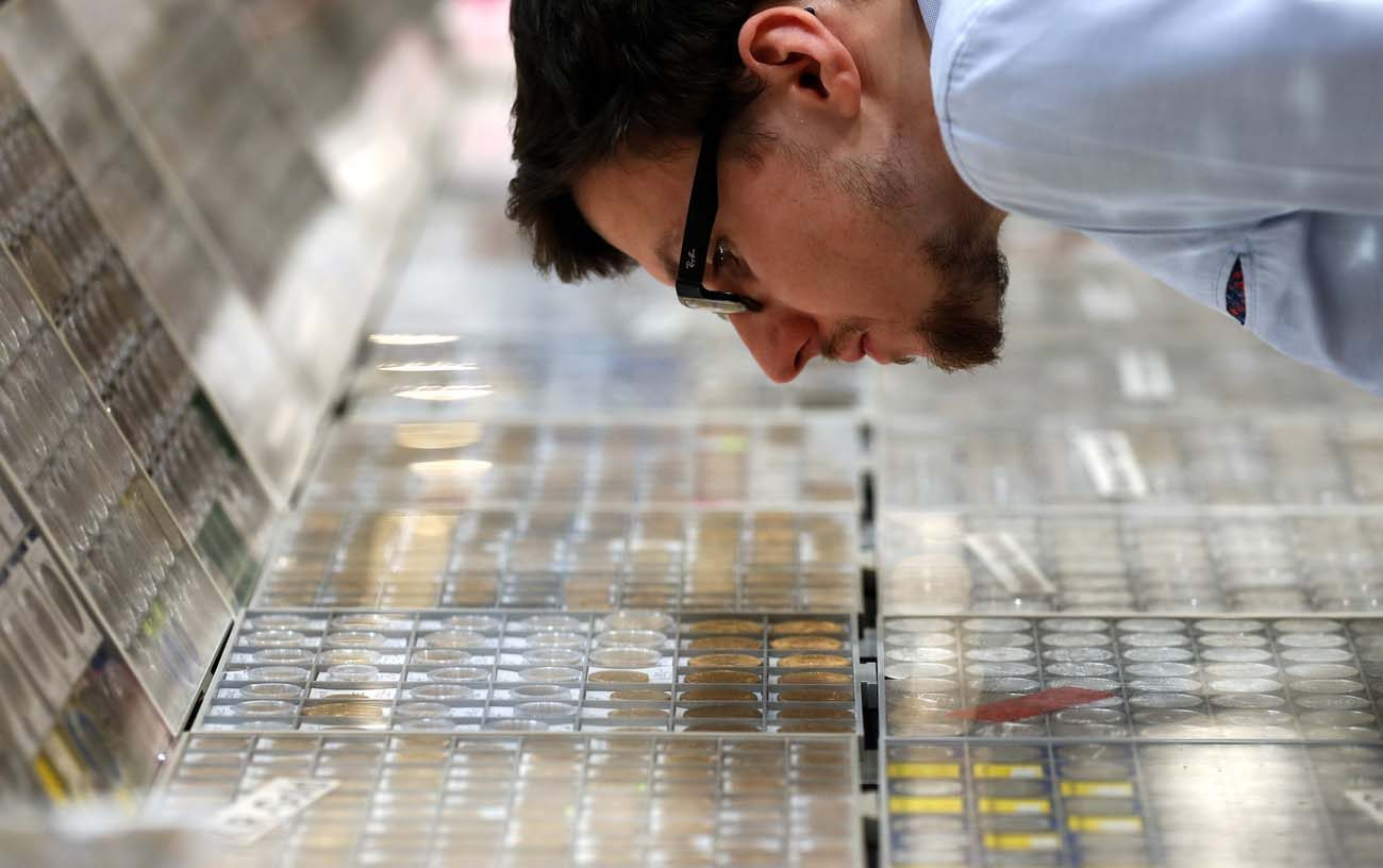 A man examines coins displayed at the World Money Fair in Berlin Feb. 3. Pope Francis wrote in his Feb. 7 Lenten message that money can chain people to a selfish logic that leaves no room for love and hinders peace. (CNS photo/Felipe Trueba, EPA)