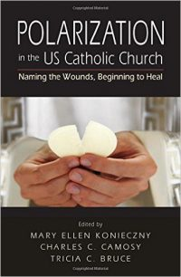 Polarization in the U.S. Catholic Church BOOK