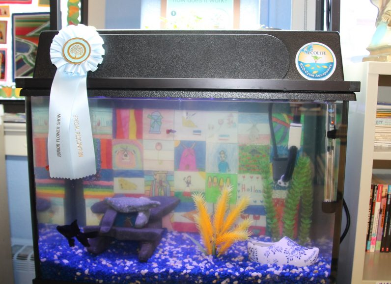A St. Agnes School project successfully grew underwater plants.