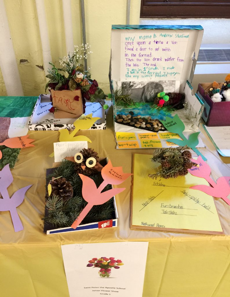 A first grader from St. Peter the Apostle School in Philadelphia made this plant-themed display for the junior flower show.