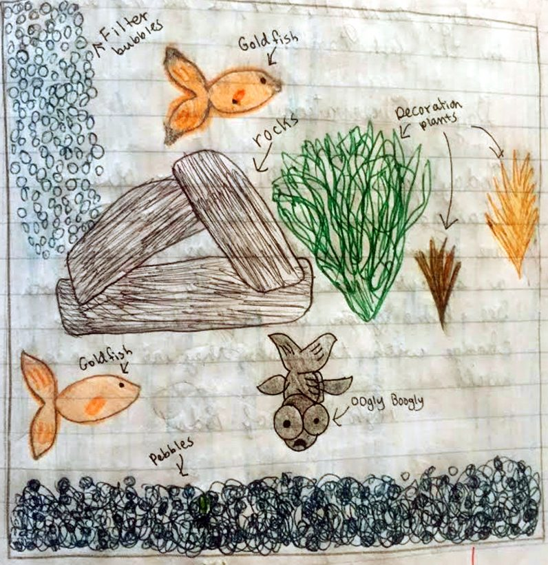 The children of St. Agnes School, West Chester, illustrated their plan for growing water plants.