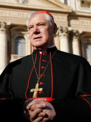 Cardinal Gerhard Muller (CNS photo/Paul Haring)