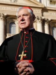 Cardinal Gerhard Muller (CNS photo/Paul Haring)