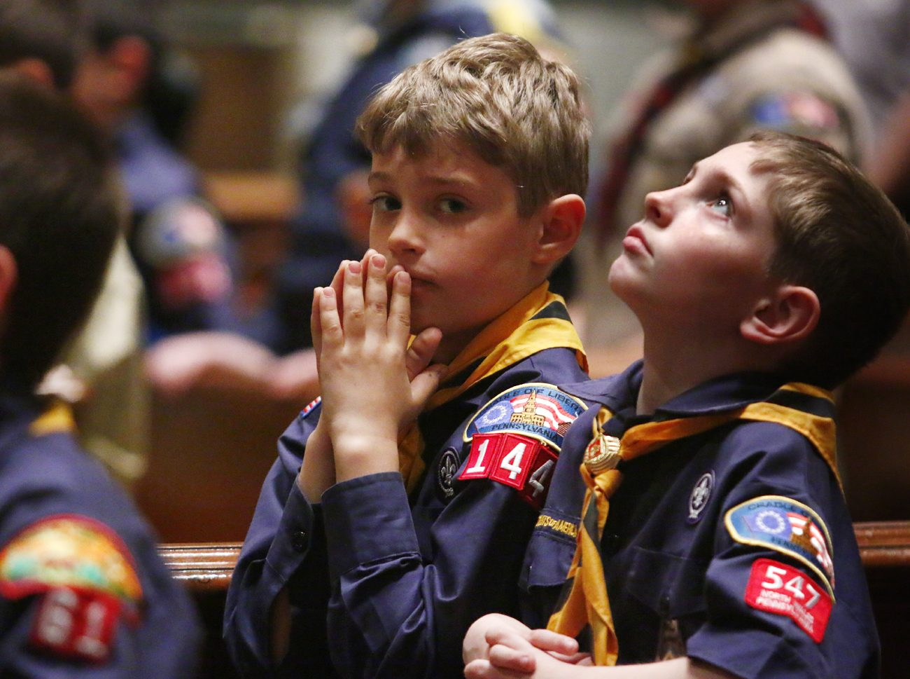 Two Cub Scouts get what may be their first look at the Cathedral Basilica of SS. Peter and Paul during the annual Mass for about 200 Catholic Scouts and their leaders April 22.