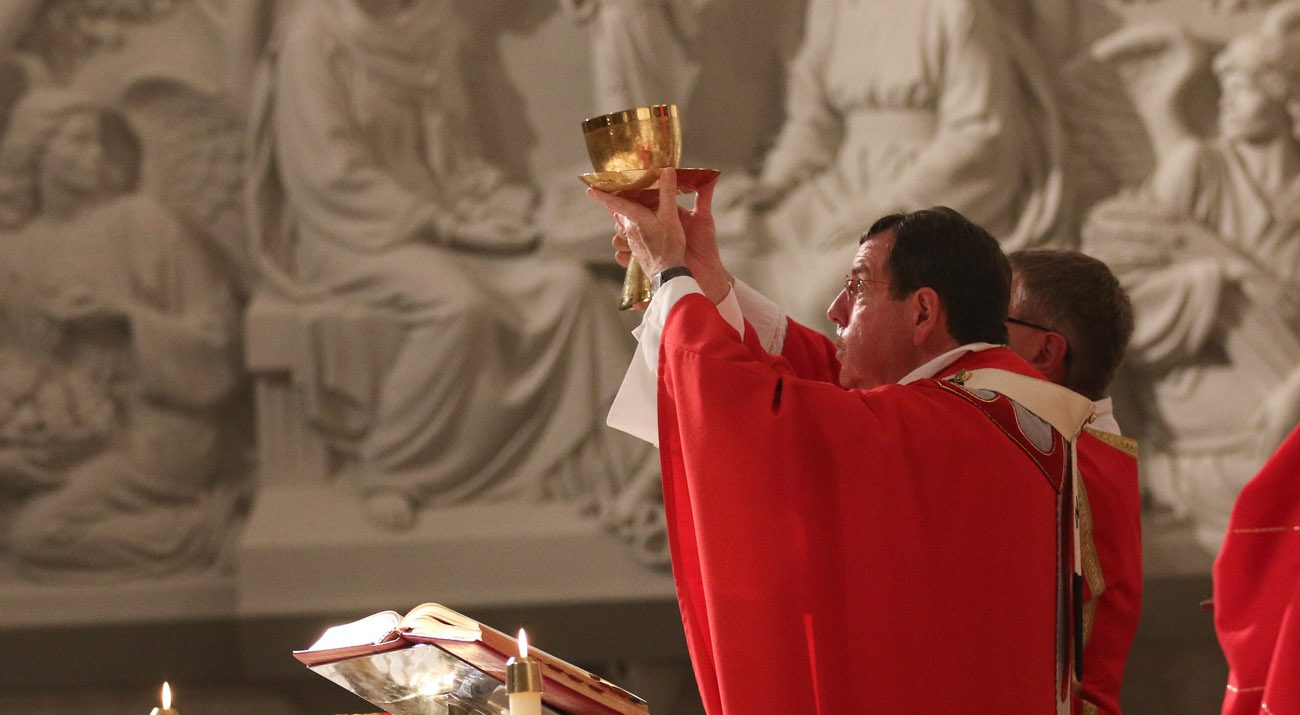 Detroit Archbishop Allen H. Vigneron celebrates Mass on the vigil of Pentecost June 3 at the Cathedral of the Most Blessed Sacrament in Detroit. (CNS photo/Jonathan Francis, Archdiocese of Detroit)