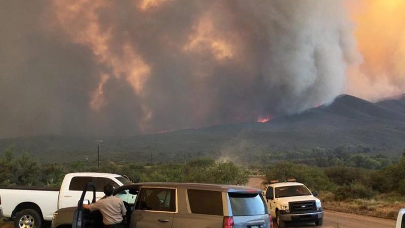 Smoke rises from the Goodwin Fire in the Prescott National Forest near Mayer, Ariz., June 29. (CNS photo/Handout, Reuters)