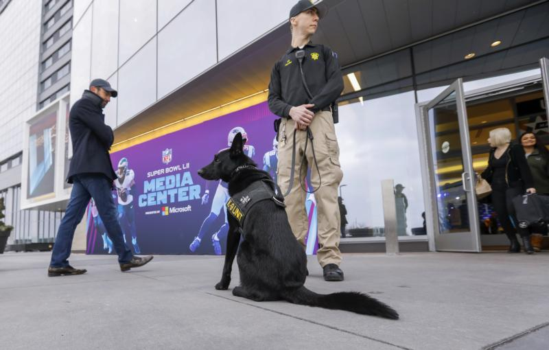 A Day In The Tps Dog Unit Com